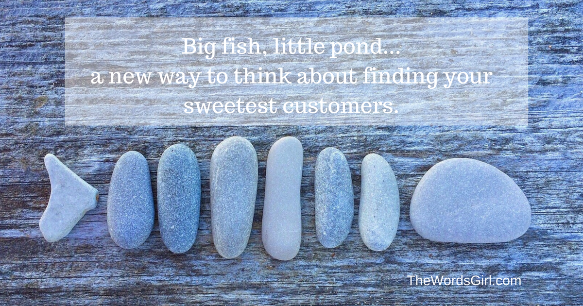 big-fish-little-pond-a-new-way-to-think-about-finding-your-sweetest-customers